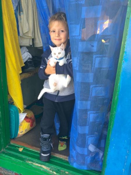 Багато хто з переселенців беруть до себе тварин: і дітям є з ким бавитись, і від мишей рятують